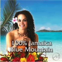 French Roast 100% Mavis Bank Jamaica Blue Mountain Coffee