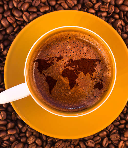 Buy Gourmet Coffees from Around the World